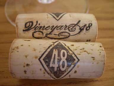 vineyard48