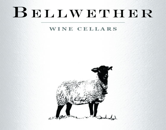 bellwether-2011-pinot-noir-banner