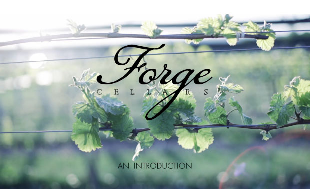 forge-video-grab