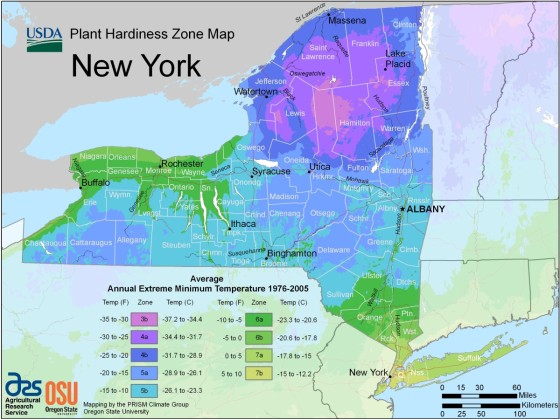 ny_hardiness_zone_map