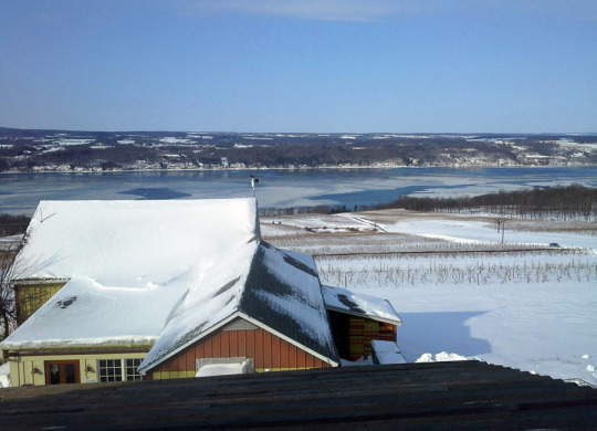 The winter view of Seneca Lake from Atwater Estate Vineyards