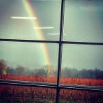 rtr-rainbow